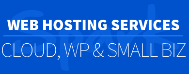 Website Hosting St Pete FL