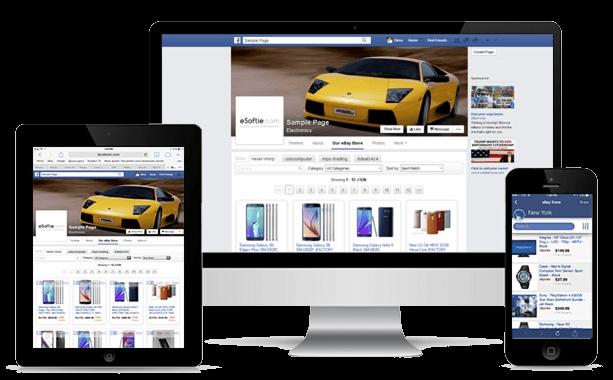 Social Media Facebook Marketing St Pete